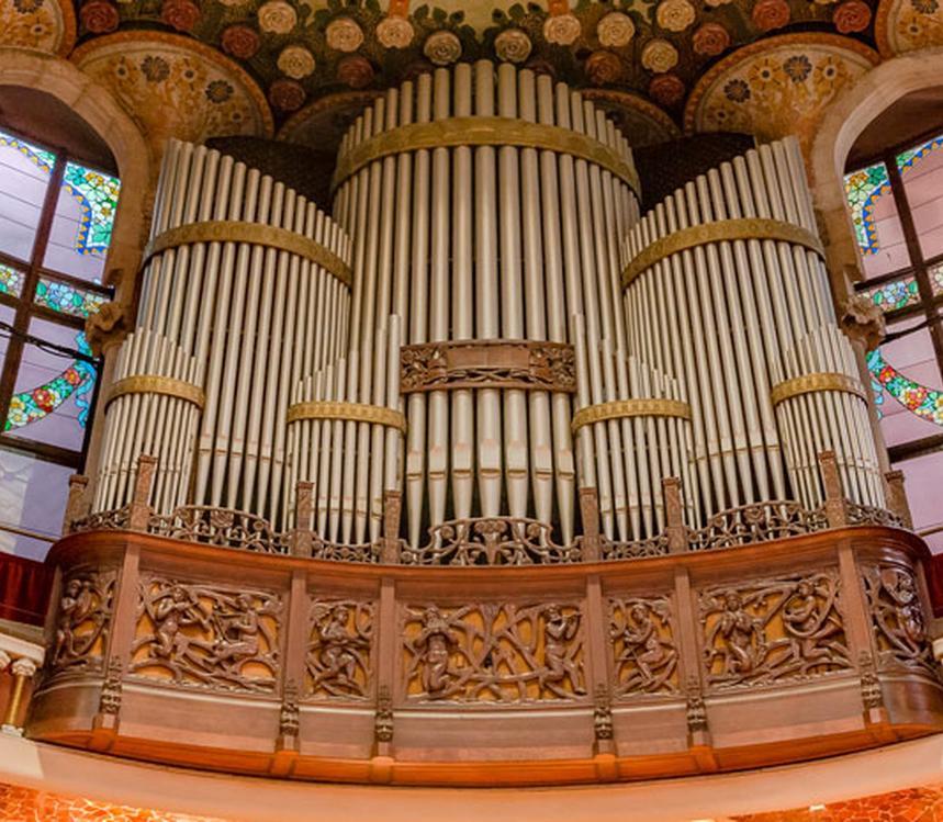 Visita Live Organ